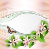 Ανασκόπηση με τα όμορφα λουλούδια ελεύθερη απεικόνιση δικαιώματος