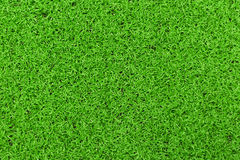 Ανασκόπηση μιας πράσινης χλόης Πράσινη χλόης σύσταση χλόης σύστασης πράσινη από έναν τομέα Στοκ Εικόνες