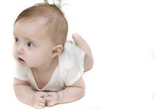 ανασκόπηση μωρών λίγα άσπρα στοκ φωτογραφίες