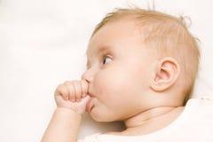 ανασκόπηση μωρών λίγα άσπρα στοκ εικόνα με δικαίωμα ελεύθερης χρήσης