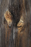ανασκόπηση ξύλινη Στοκ εικόνες με δικαίωμα ελεύθερης χρήσης