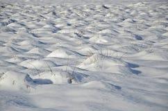 Ανασκόπηση πεδίων χιονιού Στοκ Εικόνες