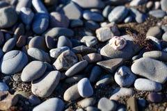Ανασκόπηση πετρών θάλασσας Γκρίζο υπόβαθρο πετρών - σύσταση πετρών χαλικιών Στοκ Φωτογραφία
