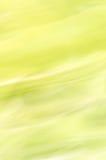 ανασκόπηση που θολώνεται αφηρημένη Κρητιδογραφία πράσινη Στοκ Εικόνα