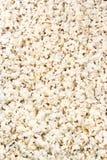 ανασκόπηση που τρώει μακρο popcorn τροφίμων κατασκευασμένο Στοκ φωτογραφία με δικαίωμα ελεύθερης χρήσης