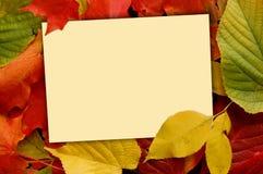 Ανασκόπηση πτώσης με την κάρτα σημειώσεων Στοκ φωτογραφία με δικαίωμα ελεύθερης χρήσης