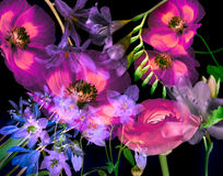 ανασκόπηση τέχνης floral ελεύθερη απεικόνιση δικαιώματος