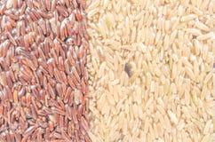 Ανασκόπηση του καφετιού ρυζιού Στοκ Εικόνες