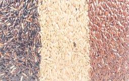 Ανασκόπηση του καφετιού ρυζιού Στοκ φωτογραφία με δικαίωμα ελεύθερης χρήσης