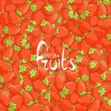 Ανασκόπηση των φραουλών ελεύθερη απεικόνιση δικαιώματος
