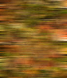 ανασκόπηση φθινοπώρου Στοκ Εικόνες