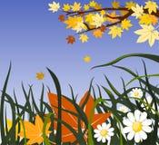 ανασκόπηση φθινοπώρου floral Στοκ Εικόνα