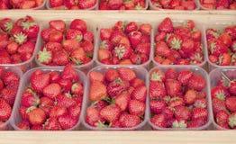 Ανασκόπηση φραουλών Στοκ εικόνες με δικαίωμα ελεύθερης χρήσης