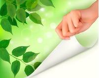 Ανασκόπηση φύσης με τα πράσινα φρέσκα φύλλα και το χέρι Στοκ Φωτογραφία