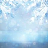 Ανασκόπηση Χριστουγέννων με τους κλάδους χριστουγεννιάτικων δέντρων Στοκ Εικόνα