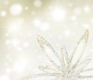 Ανασκόπηση διακοπών Χριστουγέννων Στοκ Εικόνα