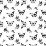 ανασκόπηση butterflyes άνευ ραφής Στοκ φωτογραφία με δικαίωμα ελεύθερης χρήσης