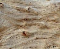 Ανασκόπηση Driftwood Στοκ φωτογραφίες με δικαίωμα ελεύθερης χρήσης
