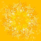 ανασκόπηση floral Στοκ φωτογραφίες με δικαίωμα ελεύθερης χρήσης