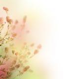 ανασκόπηση floral ελεύθερη απεικόνιση δικαιώματος