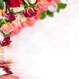 ανασκόπηση 10 floral Στοκ εικόνα με δικαίωμα ελεύθερης χρήσης