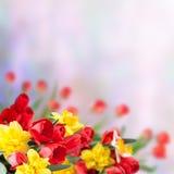 ανασκόπηση 20 floral Στοκ εικόνα με δικαίωμα ελεύθερης χρήσης