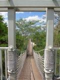Ανασταλμένη γέφυρα σχοινιών Στοκ Φωτογραφία