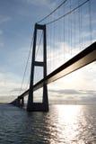 αναστολή γεφυρών storebaelt Στοκ Φωτογραφία