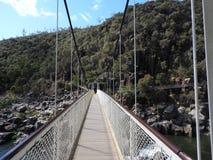 αναστολή Τασμανία γεφυρώ&n στοκ εικόνα