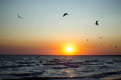 Ανατολή Μαύρης Θάλασσας στην Ουκρανία Στοκ φωτογραφία με δικαίωμα ελεύθερης χρήσης