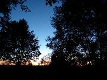 Ανατολή με τα δέντρα Στοκ Εικόνες