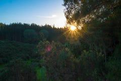 Ανατολή με την ηλιοφάνεια κατά τη διάρκεια της ανατολής στοκ εικόνες με δικαίωμα ελεύθερης χρήσης