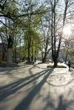 ανατολή πάρκων πόλεων Στοκ φωτογραφία με δικαίωμα ελεύθερης χρήσης