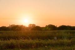 Ανατολή πέρα από τα λιβάδια στο θερινό πρωί στοκ φωτογραφίες