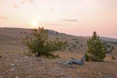 Ανατολή πέρα από το φαράγγι/το κύπελλο φλυτζανών τσαγιού στην κορυφογραμμή Sykes στα βουνά Pryor στα σύνορα του Ουαϊόμινγκ Μοντάν Στοκ φωτογραφία με δικαίωμα ελεύθερης χρήσης
