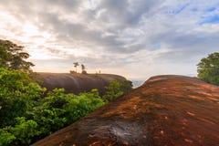 Ανατολή πρωινού και ομιχλώδης του βράχου δέντρων Στοκ Φωτογραφίες