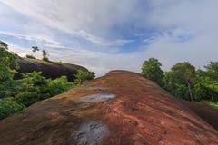 Ανατολή πρωινού και ομιχλώδης του βράχου δέντρων Στοκ φωτογραφία με δικαίωμα ελεύθερης χρήσης