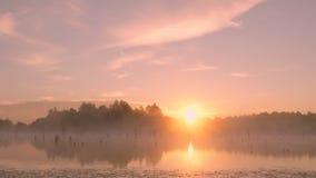 Ανατολή πρωινού της Misty στο έλος φιλμ μικρού μήκους