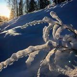 Ανατολή στην Αλάσκα στοκ εικόνα με δικαίωμα ελεύθερης χρήσης