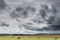 Ανατολικό τοπίο freestate με τα haybales και έναν θυελλώδη ουρανό Στοκ φωτογραφία με δικαίωμα ελεύθερης χρήσης