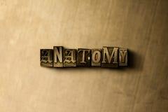 ΑΝΑΤΟΜΙΑ - κινηματογράφηση σε πρώτο πλάνο της βρώμικης στοιχειοθετημένης τρύγος λέξης στο σκηνικό μετάλλων Στοκ φωτογραφία με δικαίωμα ελεύθερης χρήσης