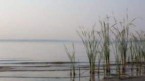 Ανατολή από τη λίμνη Στοκ Εικόνα