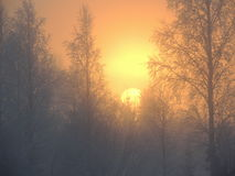Ανατολή Δεκέμβριος Σουηδία Στοκ Εικόνες