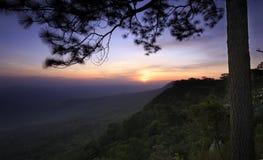 Ανατολή, ηλιοβασίλεμα στον απότομο βράχο, με τις σκιαγραφίες του δέντρου (Mak Duk Pha) στο εθνικό πάρκο Phukradung, Ταϊλάνδη (μακ Στοκ Εικόνες