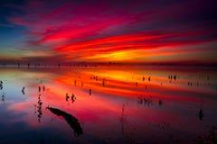Ανατολή λιμνών του Τέξας Στοκ Εικόνες
