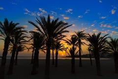 Ανατολή μεσογειακή Ισπανία παραλιών EL Arenal Javea Στοκ Εικόνα