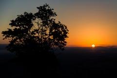 Ανατολή με τον ήλιο και το δέντρο αναδρομικά φωτισμένους Στοκ Φωτογραφίες