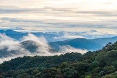 Ανατολή πέρα από τη ζούγκλα στις ορεινές περιοχές του Cameron, Μαλαισία Στοκ φωτογραφία με δικαίωμα ελεύθερης χρήσης
