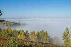 Ανατολή πρωινού πέρα από έναν τομέα με το ενιαίο δέντρο και την ομίχλη στην απόσταση Στοκ φωτογραφίες με δικαίωμα ελεύθερης χρήσης