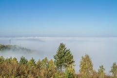 Ανατολή πρωινού πέρα από έναν τομέα με το ενιαίο δέντρο και την ομίχλη στην απόσταση Στοκ φωτογραφία με δικαίωμα ελεύθερης χρήσης